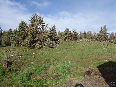 Residential Lots & Land For Sale: Southwest Elk Ridge Court