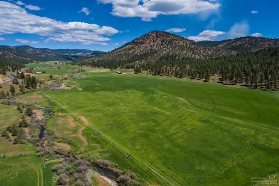 Prineville Farm & Ranch For Sale: 7900 Northeast Mill Creek