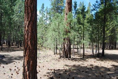 Crook County, Deschutes County, Jefferson County, Klamath County, Lake County Residential Lots & Land For Sale: 15120 Ponderosa Loop