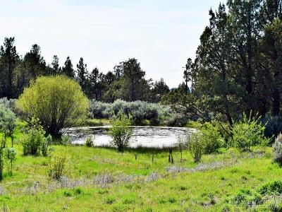 Prineville Residential Lots & Land For Sale: 12919 Southeast Hagen Way