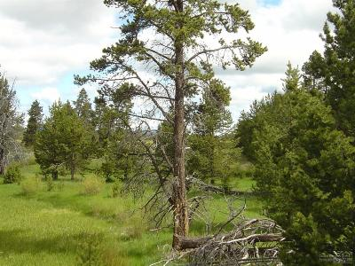 La Pine Residential Lots & Land For Sale: 16415 Northwest Burgess Road