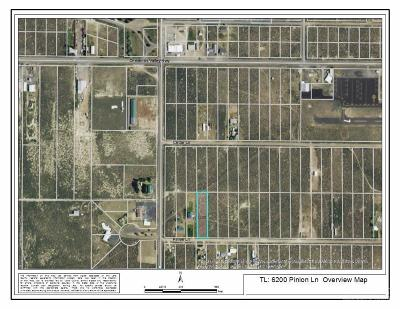 Christmas Valley Residential Lots & Land For Sale: 6200 Pinion Lane