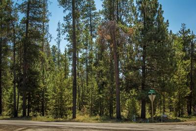 Crook County, Deschutes County, Jefferson County, Klamath County, Lake County Residential Lots & Land For Sale: 52648 Ammon Road