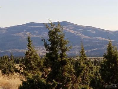 Prineville Residential Lots & Land For Sale: Southeast Salt Creek Road