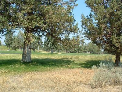 Redmond OR Residential Lots & Land For Sale: $187,500