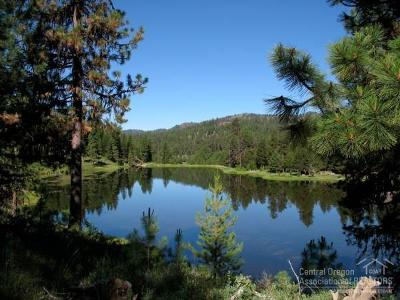 Prineville Residential Lots & Land For Sale: 18243 Northeast Hamilton Butte Drive