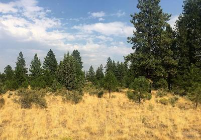 Bend Residential Lots & Land For Sale: 115 Buck Canyon Road