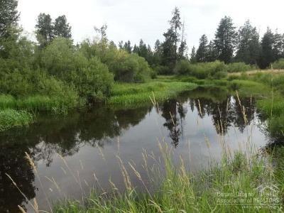 La Pine Residential Lots & Land For Sale: Dorrance Meadow Road