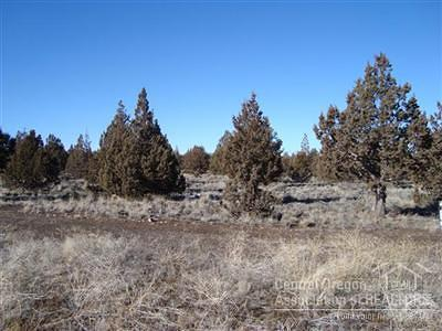 Prineville Residential Lots & Land For Sale: 13150 Southeast Falcon Ridge Road