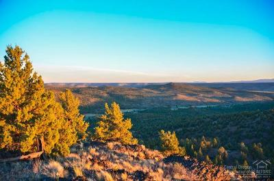Prineville Farm & Ranch For Sale: 33233 Southeast Little Bear Creek Road