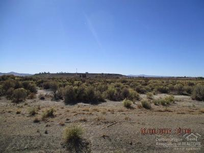 Christmas Valley Residential Lots & Land For Sale: 300 Christmas Valley Highway