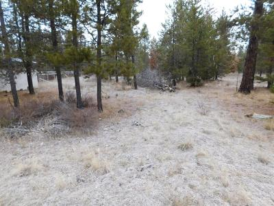 Residential Lots & Land For Sale: 16474 Carter Court