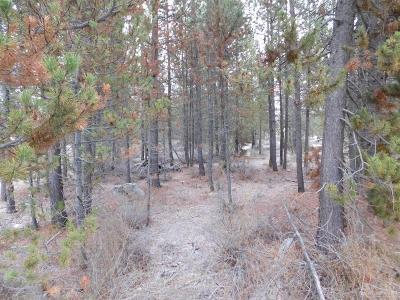 La Pine, Crescent, Gilchrist Residential Lots & Land For Sale: 16497 Carter Court