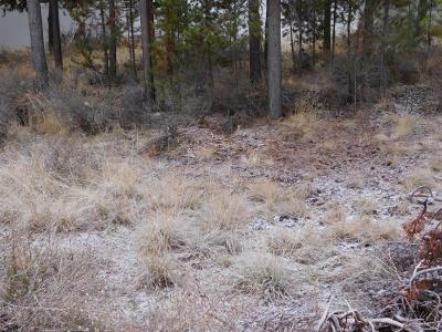 La Pine, Crescent, Gilchrist Residential Lots & Land For Sale: 51302 Preble Way