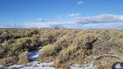 Christmas Valley Residential Lots & Land For Sale: Willow (County Hwy 9-16) Street