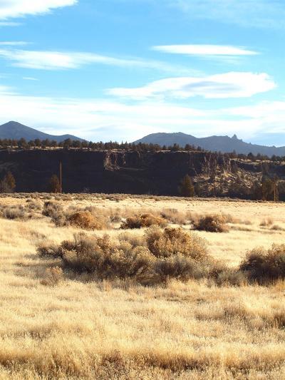 Terrebonne Residential Lots & Land For Sale: Southwest Trout Road