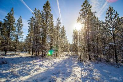 Crook County, Deschutes County, Jefferson County, Klamath County, Lake County Residential Lots & Land For Sale: 16781 Cagle Road