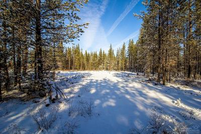 Crook County, Deschutes County, Jefferson County, Klamath County, Lake County Residential Lots & Land For Sale: 16760 Pine Place