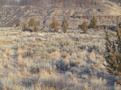 Crooked River Residential Lots & Land For Sale: Southwest Business Circle