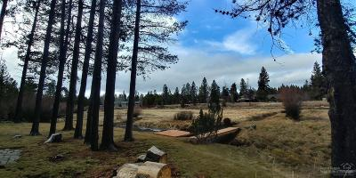 Residential Lots & Land For Sale: 55645 Big River Drive