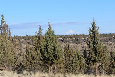 Culver Residential Lots & Land For Sale: 11410 Southwest Upper Canyon Rim Drive