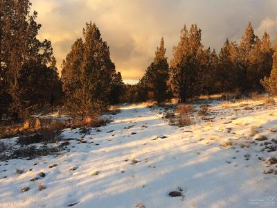 Prineville Residential Lots & Land For Sale: Southeast Fox