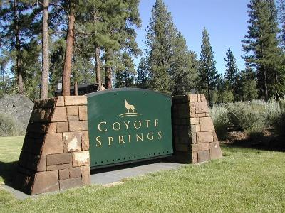 Sisters Residential Lots & Land For Sale: 925 East Coyote Springs Road