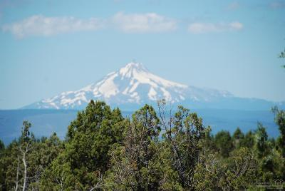 Redmond Residential Lots & Land For Sale: 713 Highland View Loop