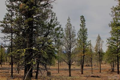 Sisters Residential Lots & Land For Sale: 70363 Longhorn
