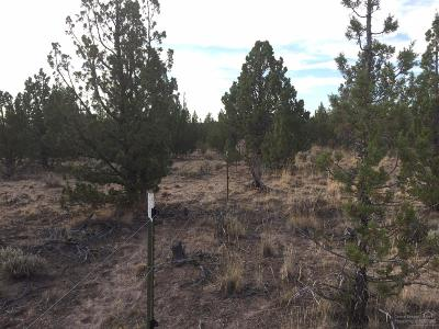 Prineville Residential Lots & Land For Sale: 13355 Southeast Lost Lake Drive