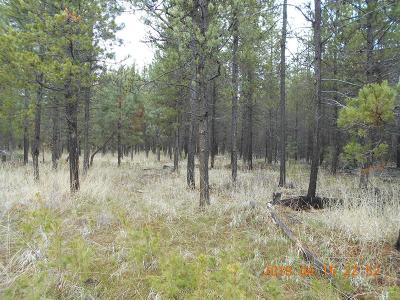 Residential Lots & Land For Sale: 16766 Casper Drive