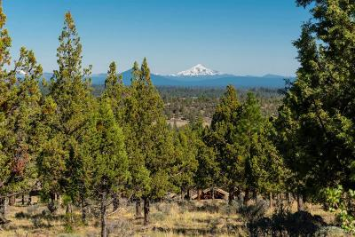 Bend Residential Lots & Land For Sale: 1801 Northwest Wild Rye Circle