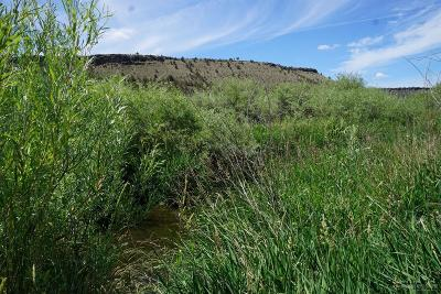 Prineville Residential Lots & Land For Sale: SE Triangle Outfit Drive