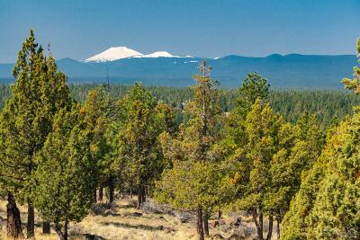 Bend Residential Lots & Land For Sale: NW Perspective Drive