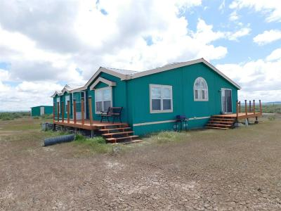 Christmas Valley OR Mobile/Manufactured For Sale: $165,900