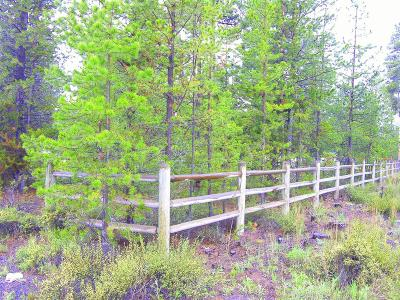 La Pine Residential Lots & Land For Sale: 15887 Sparks Drive