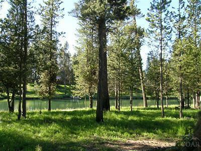 Bend Residential Lots & Land For Sale: 17181 Merganser Drive