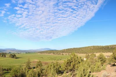 Prineville Farm & Ranch For Sale: 4550 Northeast Johnson Creek Road