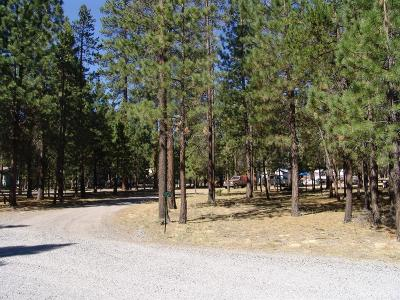 La Pine Residential Lots & Land For Sale: 52025 Noble Fir
