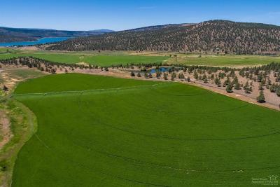 Prineville Farm & Ranch For Sale: 2648 Northeast Double L Road