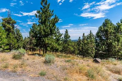 Bend Residential Lots & Land For Sale: 3237 Northwest Fairway Heights Drive