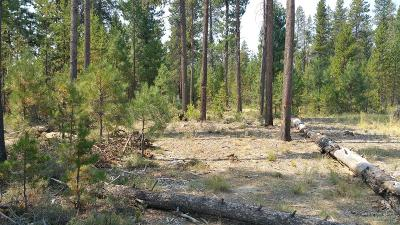 La Pine Residential Lots & Land For Sale: 51635 Dorrance Meadow Road
