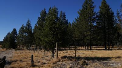 La Pine Residential Lots & Land For Sale: 4300 Ranger Court