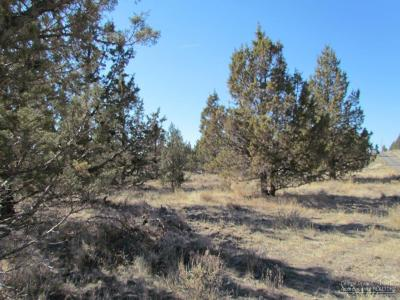 Prineville Residential Lots & Land For Sale: SE Coyote Lane
