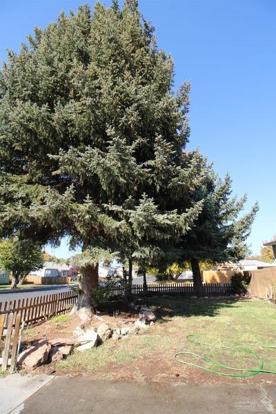 Prineville Single Family Home For Sale: 304 SW Deer Street