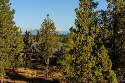Bend Residential Lots & Land For Sale: 1563 NW Wild Rye Circle