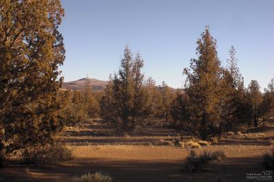 Prineville Residential Lots & Land For Sale: Cascade Way