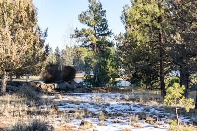 Sisters Residential Lots & Land For Sale: 16837 Golden Stone Drive