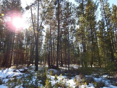 Bend Residential Lots & Land For Sale: 55495 Jamie Way