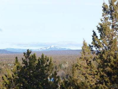 Prineville Residential Lots & Land For Sale: 6648 SE Night Hawk Drive